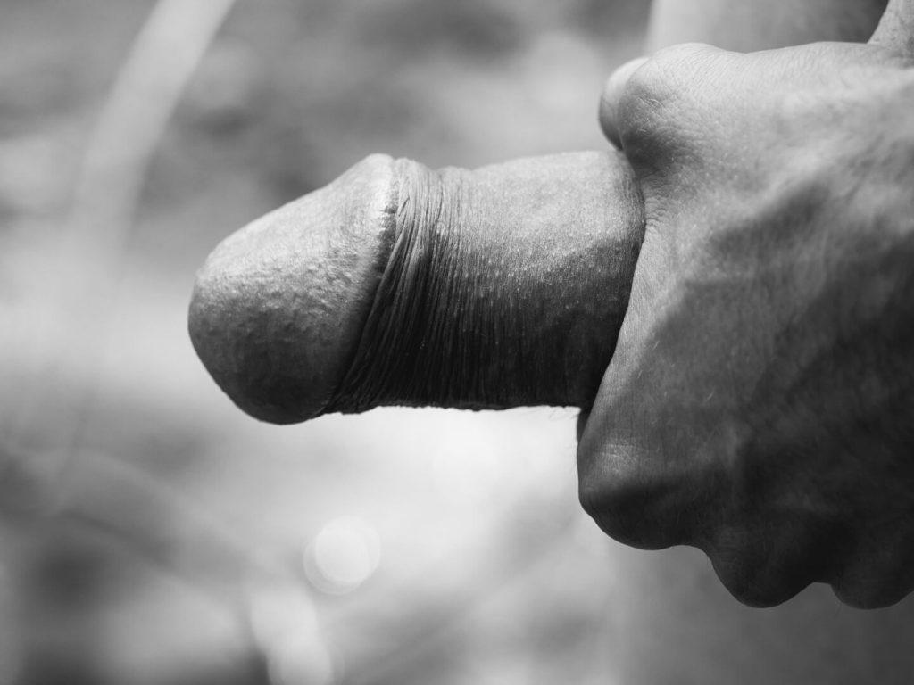 Animuszowo męskie członki fotografie