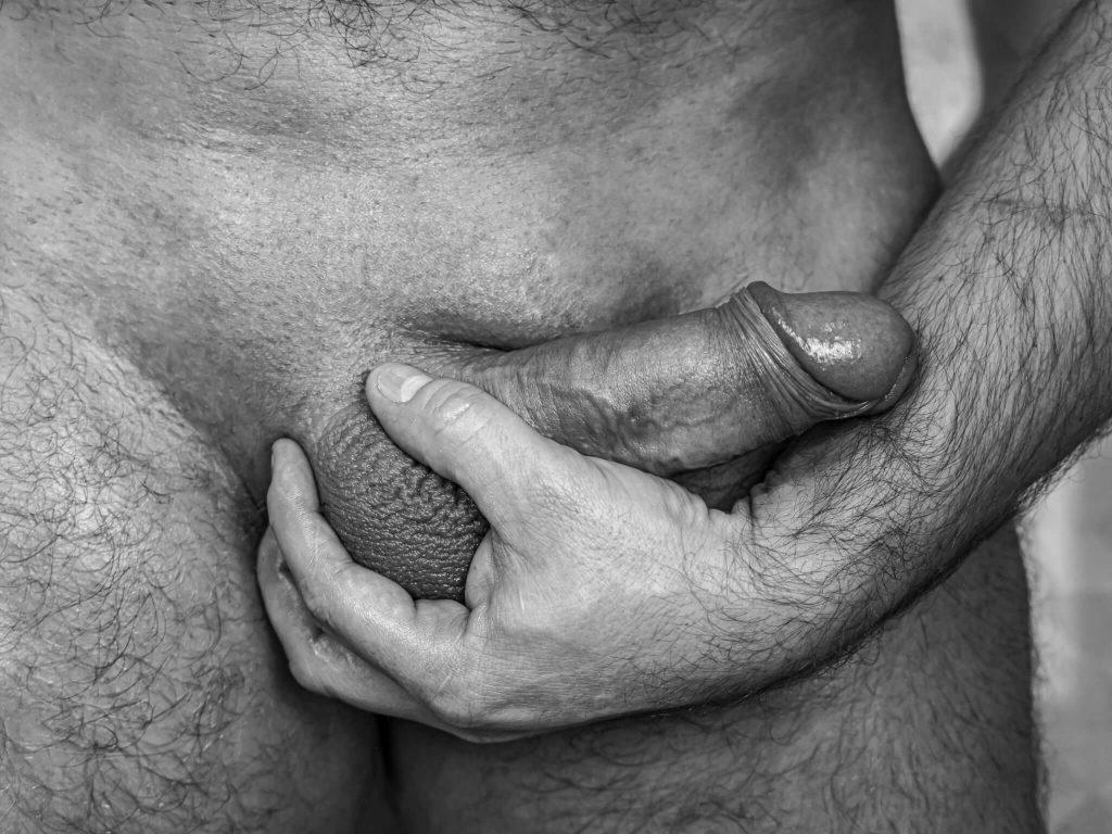 Animuszowo fotografia erotyczna